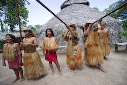Yagua Indians demonstrate the use of their blowguns