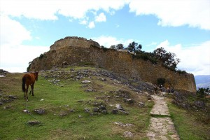 chachapoyas-fortress-horse
