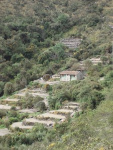 4_inca_trail_to_machu_picchu_campsite-copia
