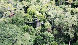 08inkaterra-travel-peru-canopy-trek-house